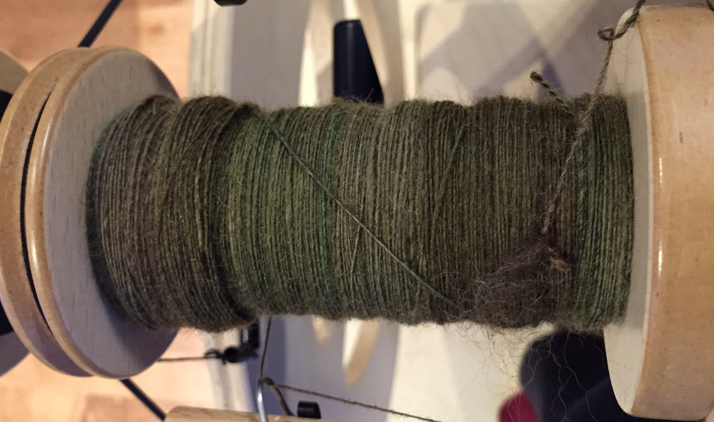 progress spinning BFL from Southern Cross Fibre (2)