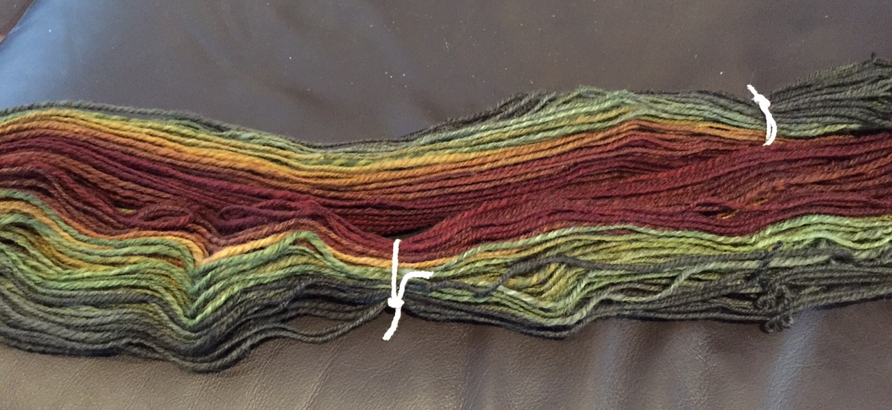 Promise on Finn wool from Southern Cross Fibre, spun as a gradient, 210yds of chain ply