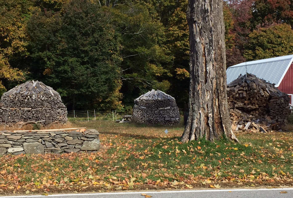 Rhinecliff woodpiles